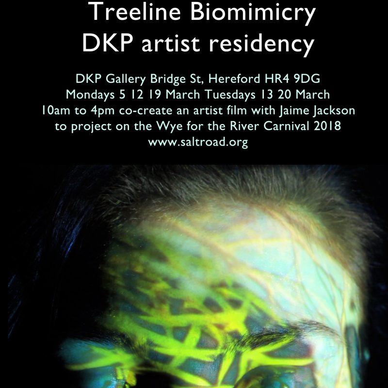 Treeline Biomimicry - DKP Artist Residency @ De Koffie Pot | England | United Kingdom
