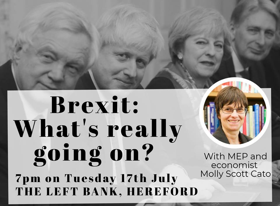 BREXIT - WHAT'S REALLY GOING ON? JOIN MEP MOLLY SCOTT CATO @ The Left Bank Village